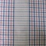 Blue & red check